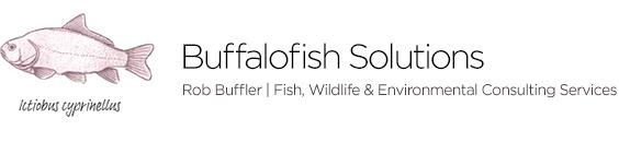 Buffalofish Solutions